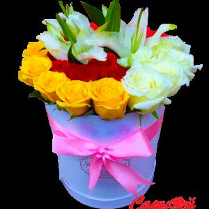 Хайрцагтай цэцэг цоморлиг